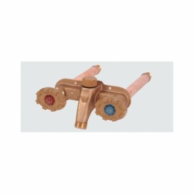 Woodford® 22CP-10-MH